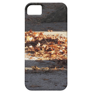 Dead leaves lying on the ground in the fall iPhone 5 case