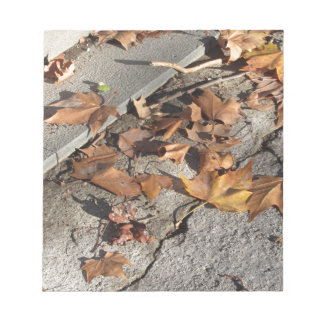 Dead leaves lying on the ground in the fall notepads