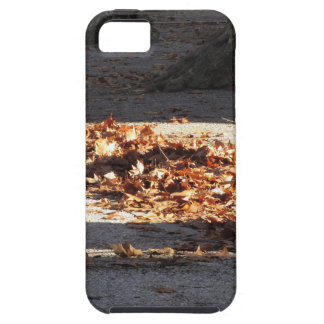 Dead leaves lying on the ground in the fall tough iPhone 5 case
