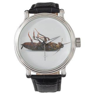 Dead roach wristwatch