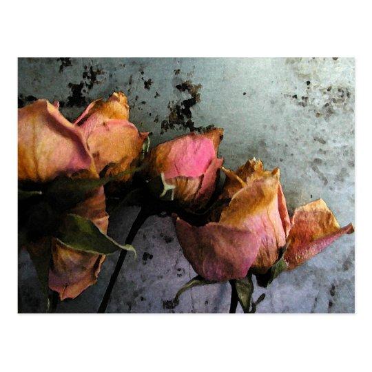 Dead Roses Watercolor Postcards