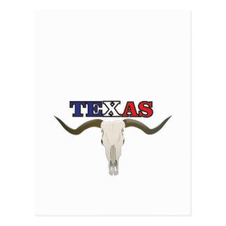 dead texas longhorn postcard