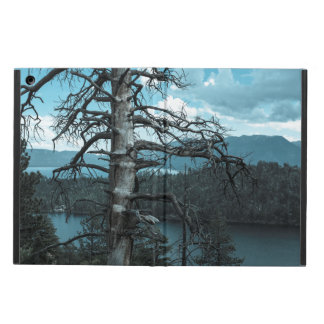 Dead Tree In Lake Tahoe Case For iPad Air
