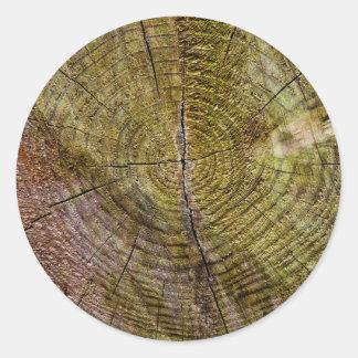 Dead tree rings round sticker