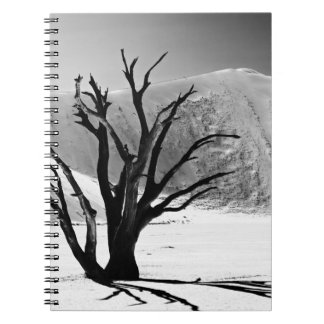 DEAD Vlei in desert landscape OF Namib Notebook
