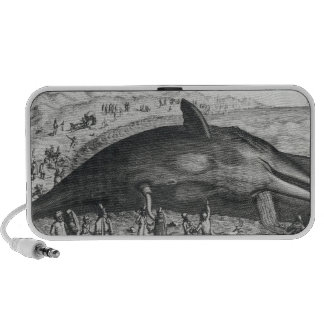 Dead whale travel speakers