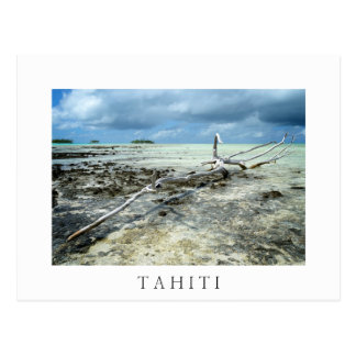 Dead wood in Tahiiti white text postcard