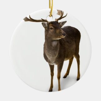 Dear Deer! Round Ceramic Decoration