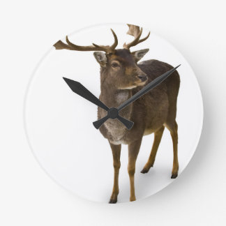 Dear Deer! Wall Clocks
