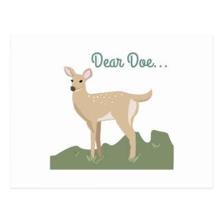 Dear Doe... Postcard