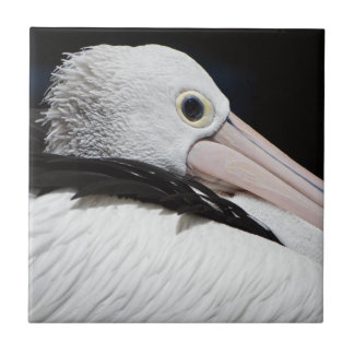 Dear Pelican Small Square Tile