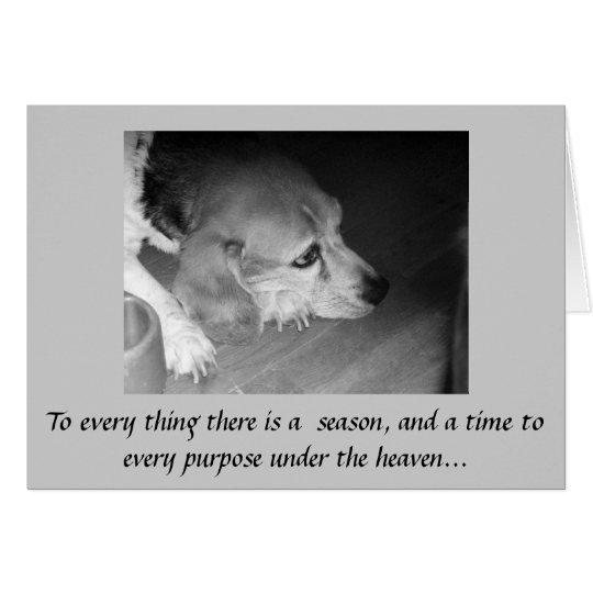 Death of Pet Sympathy Card