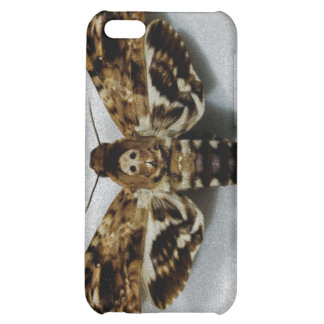 Death s Head Hawkmoth Acherontia Lachesis Cover For iPhone 5C