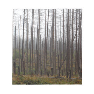 Death spruce trees notepad