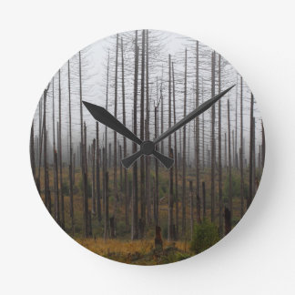 Death spruce trees round clock