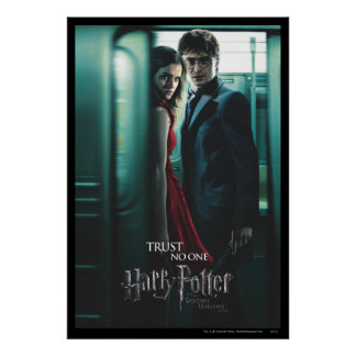 Deathly Hallows - Harry and Hermione Poster