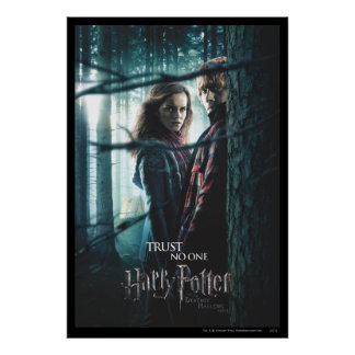 Deathly Hallows - Hermione and Ron Poster