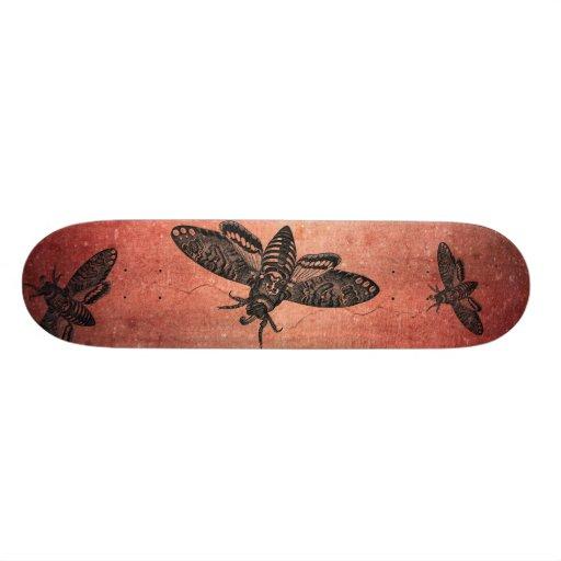Death's Head Hawk Moth Skateboard