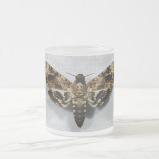 Death's Head Hawkmoth Acherontia Lachesis Frosted Glass Coffee Mug