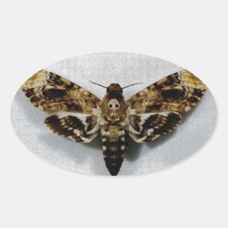 Death's Head Hawkmoth Acherontia Lachesis Oval Sticker