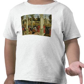 Debate of St. Stephen Shirt