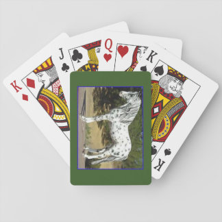 Deck of playing cards with a Piebald colored horse