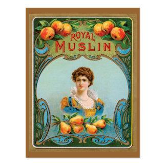 Deco Victorian Royal Muslin Artwork Postcard