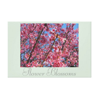 Decor Artwork Flowers Flower Blossoms Pink Pretty Stretched Canvas Prints