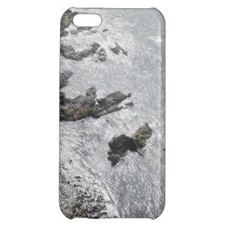 Decorative, creative phone cases iPhone 5C cover