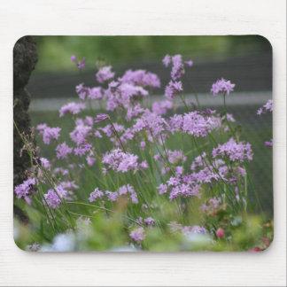 Decorative garlic blossoms mousepad