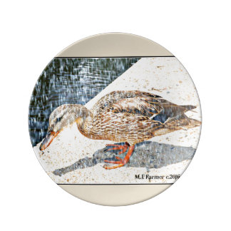 "Decorative Plate ""Crown King Duck in Rain"""