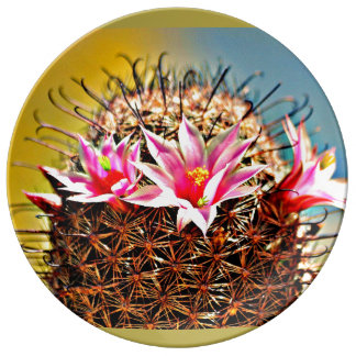 Decorative Porcelain Plate - Cactus Flower