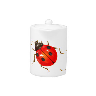 DECORATIVE RED LADY BUG GIFTS