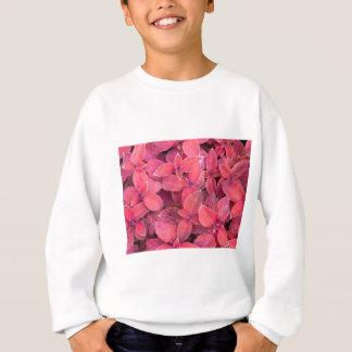 Decorative red plants sweatshirt