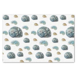 Decorative tissue paper seashells