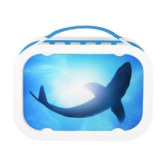Deep Ocean Shark Silhouette Lunch Box