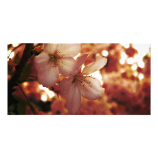 Deep Pink Customized Photo Card