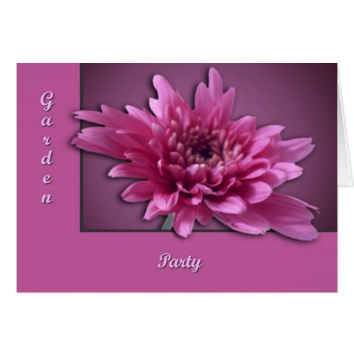 Deep Pink Daisy Greeting Cards
