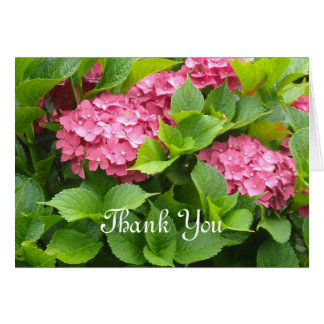 Deep Pink Hydrangeas Thank You Card