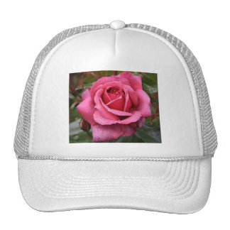 Deep Pink Morning Rose Cap