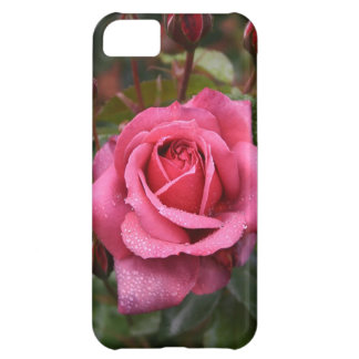 Deep Pink Morning Rose iPhone 5C Covers