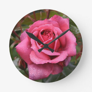 Deep Pink Morning Rose Wall Clock