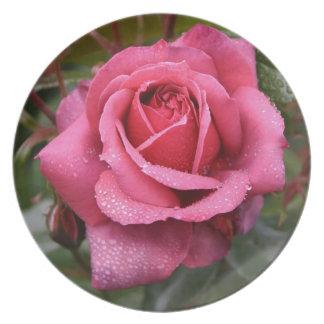 Deep Pink Morning Rose Dinner Plate