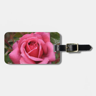 Deep Pink Morning Rose Bag Tag