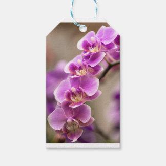 Deep Pink Phalaenopsis Orchid Flower Chain