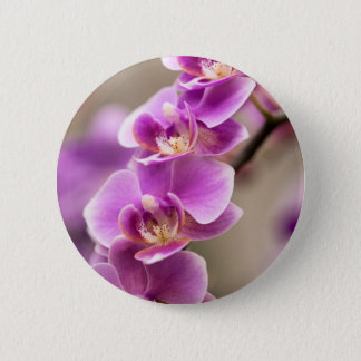 Deep Pink Phalaenopsis Orchid Flower Chain 6 Cm Round Badge