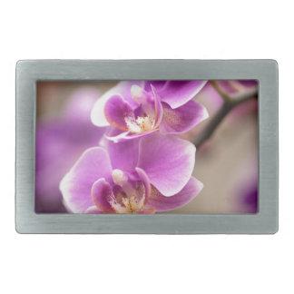 Deep Pink Phalaenopsis Orchid Flower Chain Belt Buckles