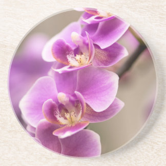 Deep Pink Phalaenopsis Orchid Flower Chain Coaster