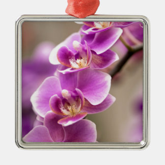 Deep Pink Phalaenopsis Orchid Flower Chain Metal Ornament