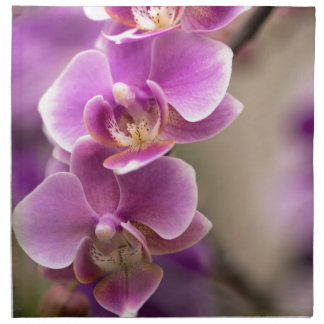 Deep Pink Phalaenopsis Orchid Flower Chain Napkin